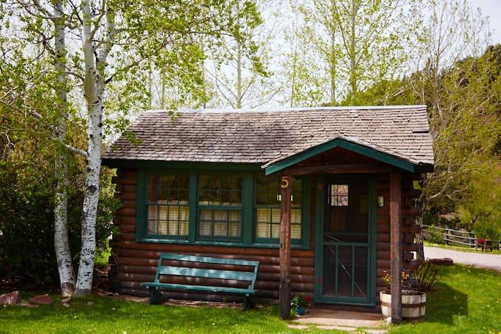 Studio Cabin on Roaring Fork River - Snowmass