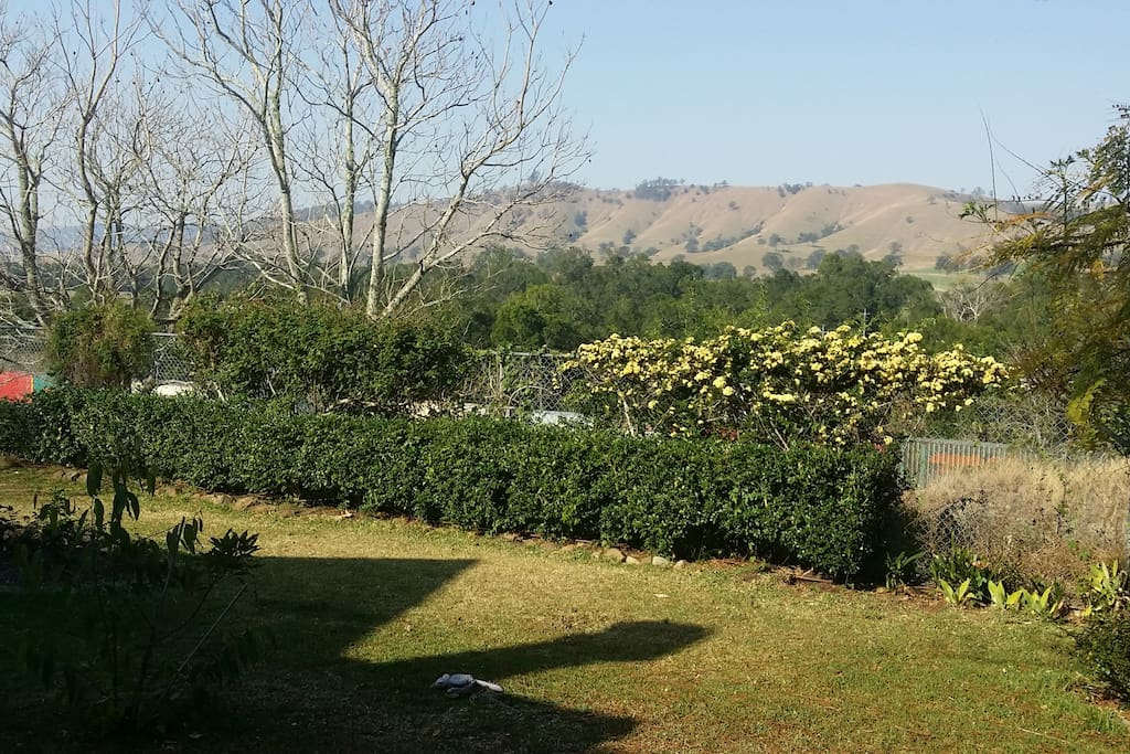 View from the garden across Dungog hills