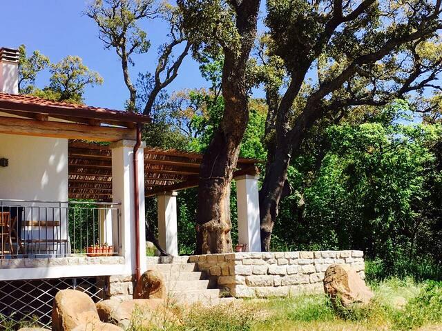 The Blackstone - Tempio Pausania - Casa