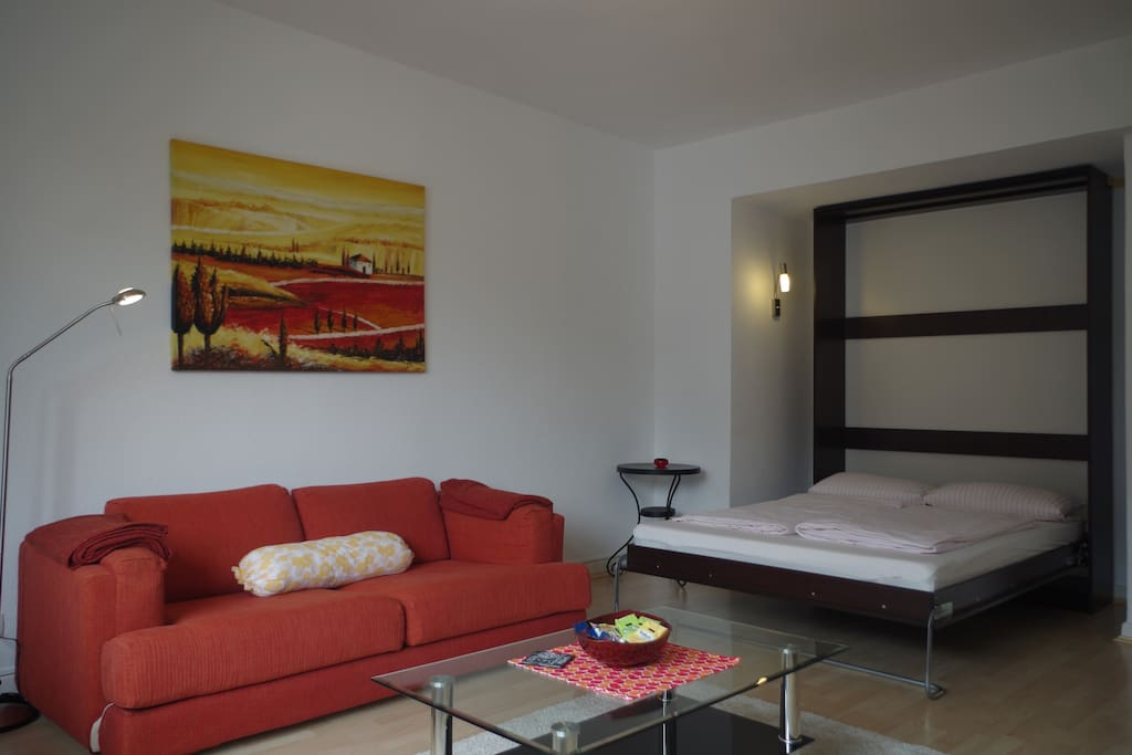Wohn- und Schlafzimmer - the living area is thanks to clever usage of furniture very spacious