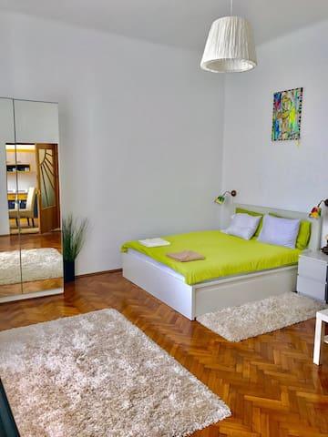 STUDIO CENTRAL SIBIU - Sibiu - House