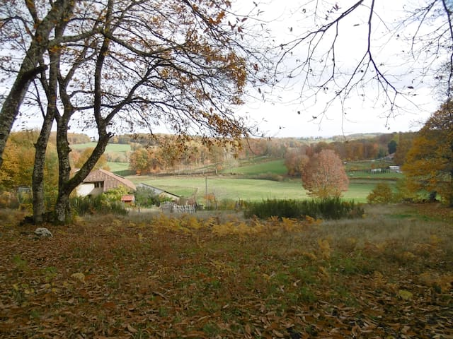 View from our chestnut orchard