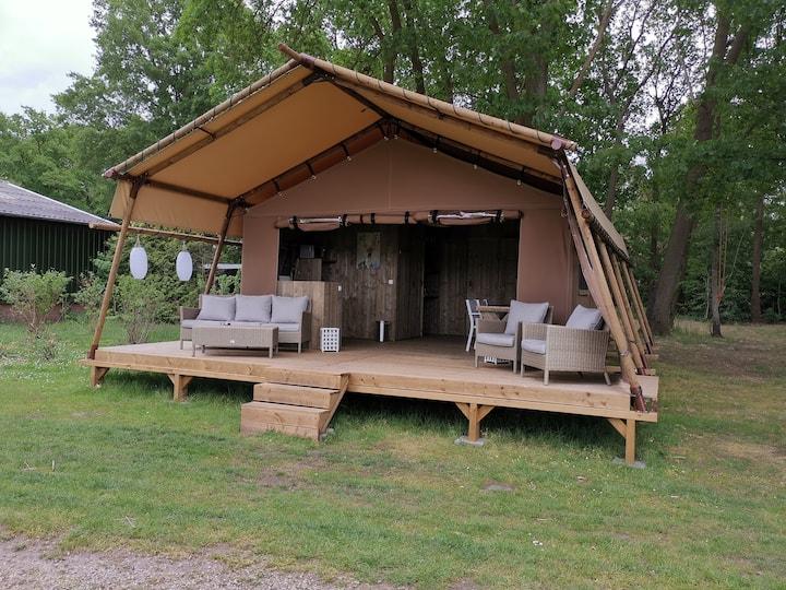Safari tent 5 people