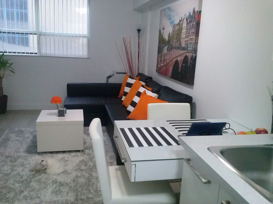 Fully Renovated 1 Bedroom Condo Condominiums For Rent In Toronto Ontario Canada