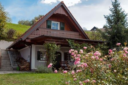 Haus Gerlinde 2 - Sausal