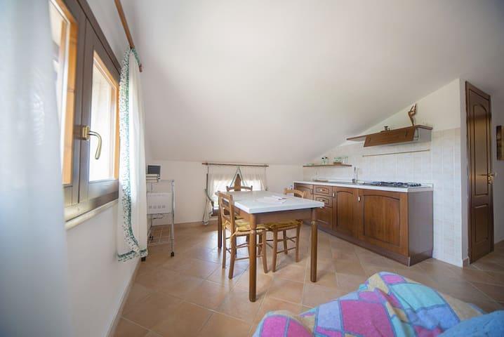 One Bedroom Apartment Attic