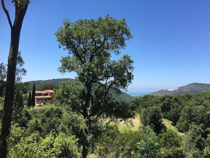 Apt (Fico) in farmhouse, Tuscany