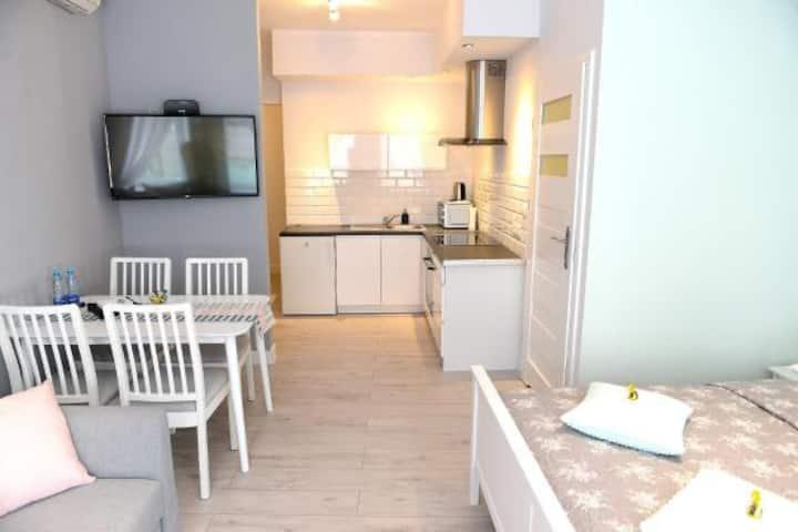 Apartamenty Zamkowa, Apartament typu Standard 2