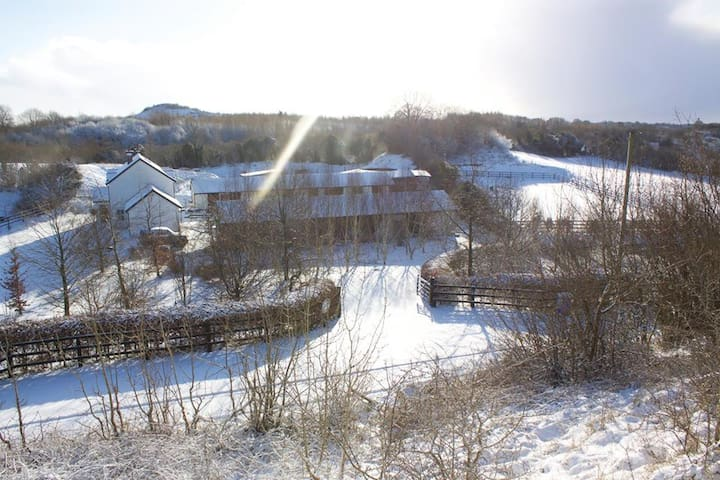 Orchid Lodge & Stables Farm stay