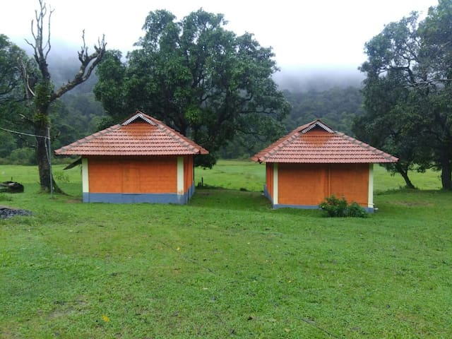 Nature Escape in Remote Coorg (Watefall Trek)