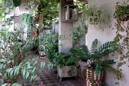 Single Room in Artist house with green patio - Buenos Aires