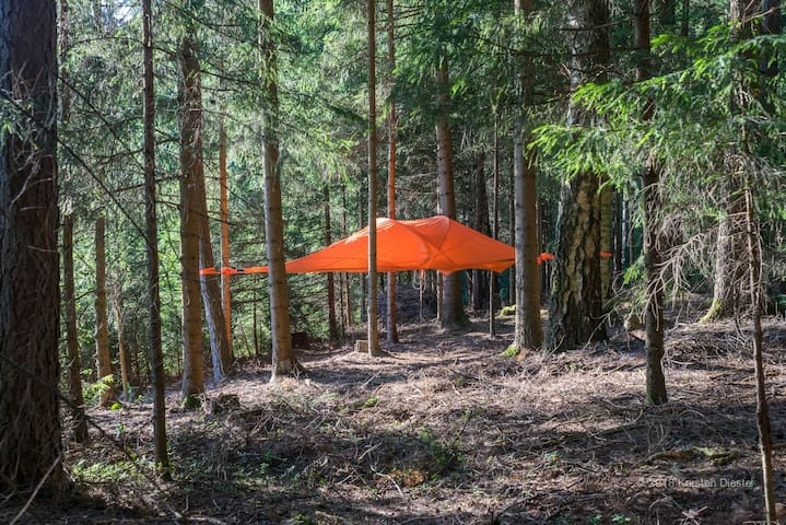 Zelt am Waldesrand- Tent at the edge of the wood