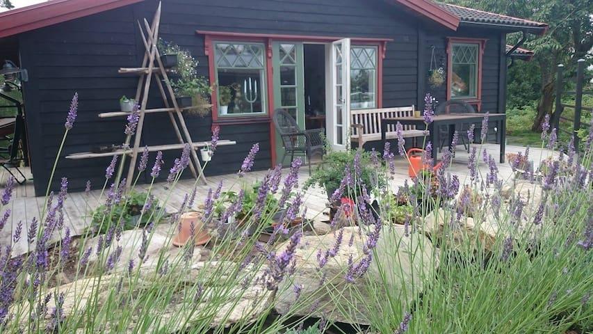 En semester idyll på Västkusten - Uddevalla V - Haus