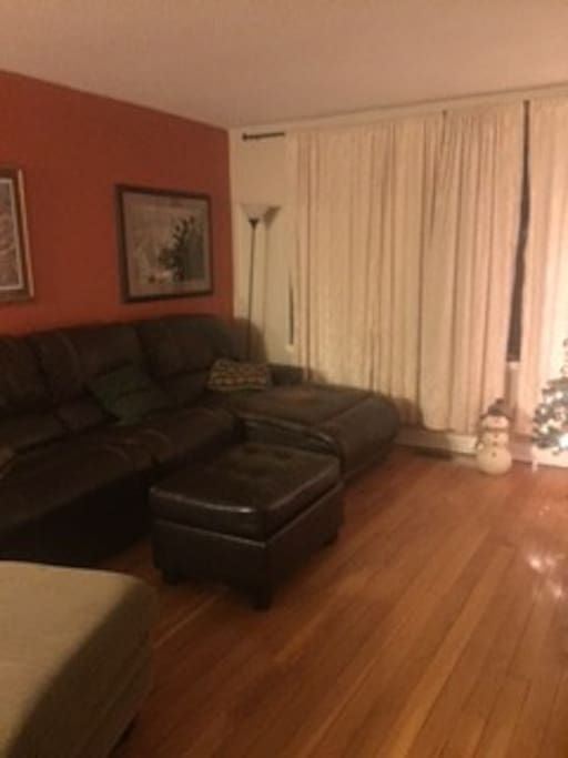 Spacious living room; very comfortable couch that easily can sleep two.