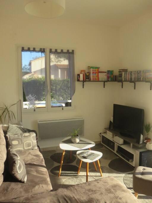 Coin salon avec téléviseur , home cinéma, canalsat, internet en wifi, lecteur dvd) Le canapé est convertible en couchage deux personnes