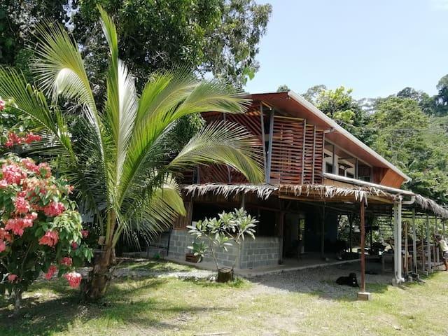 """Habitación Master """"Jaguar""""  Orgánico Punta Riel"""