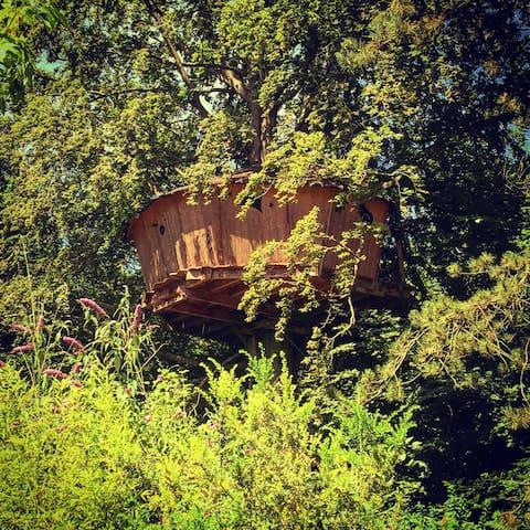 La cabane au fil de l'eau - Wail - Casa en un árbol