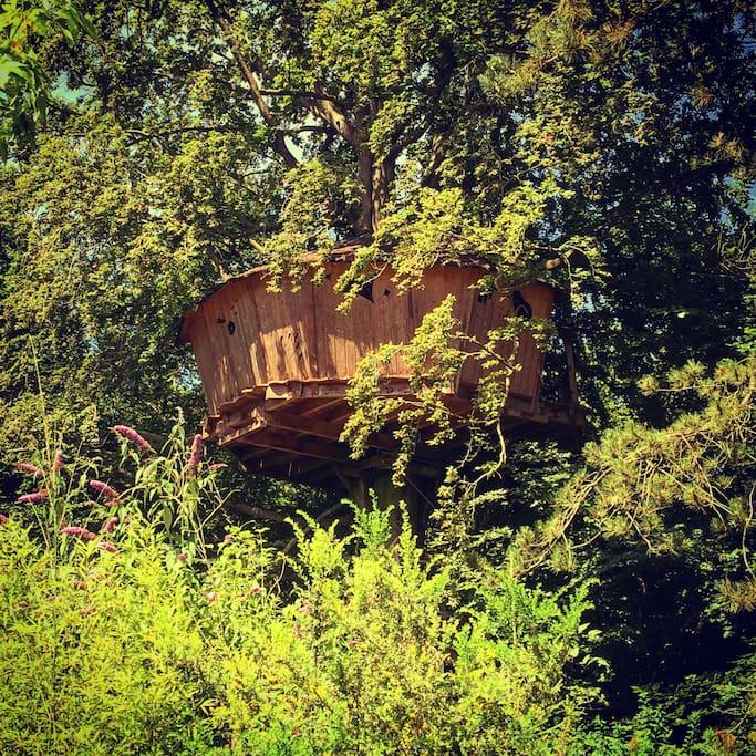 la cabane au fil de l 39 eau cabanes dans les arbres louer wail nord pas de calais picardie. Black Bedroom Furniture Sets. Home Design Ideas
