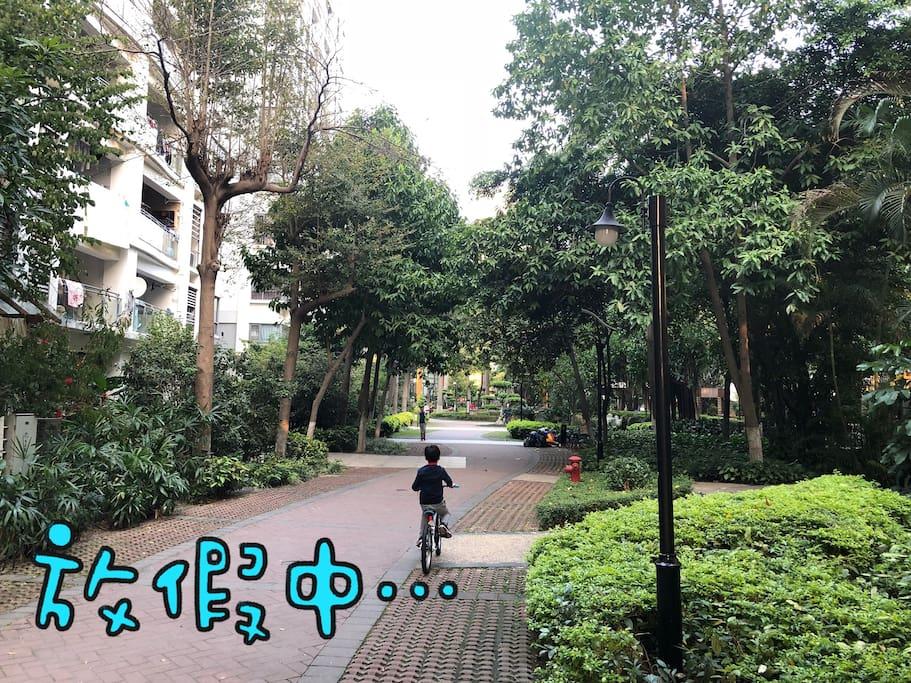 小区绿色步道