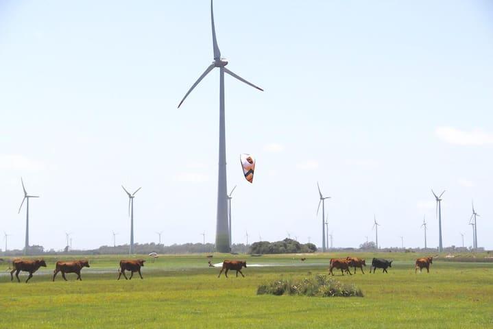 Fazenda mais kite, Parque eólico Osorio