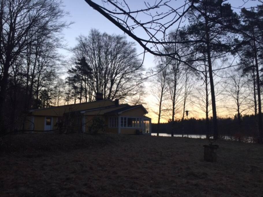 House in springtime
