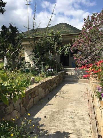 Villa bifamiliare immersa nel Verde - Tertenia - Apartment