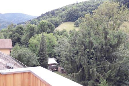 Gîte L'Ecole CM2 avec terrasse en bois et vue
