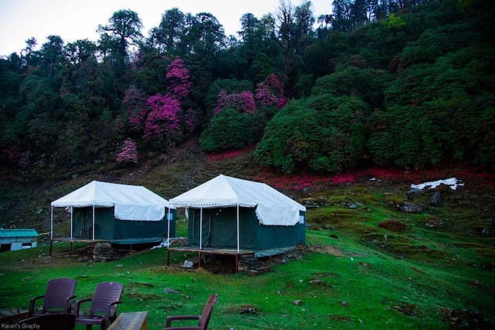 CHOPTA WILDLIFE CAMPS AND RESORTS