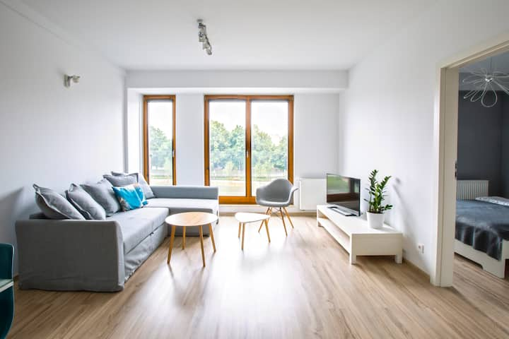 Comfortable Apartment near park and Old Square