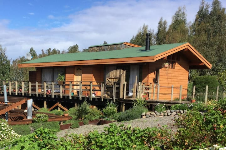 Cabaña Boldo | Leones del Rungue