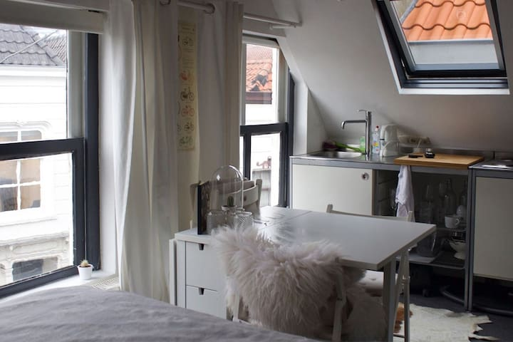 Cozy studio in the city center - 's-Hertogenbosch (Den Bosch, A Floresta do Duque) - Apartamento