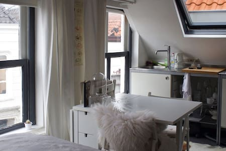 Cozy studio in the city center - 's-Hertogenbosch - Wohnung