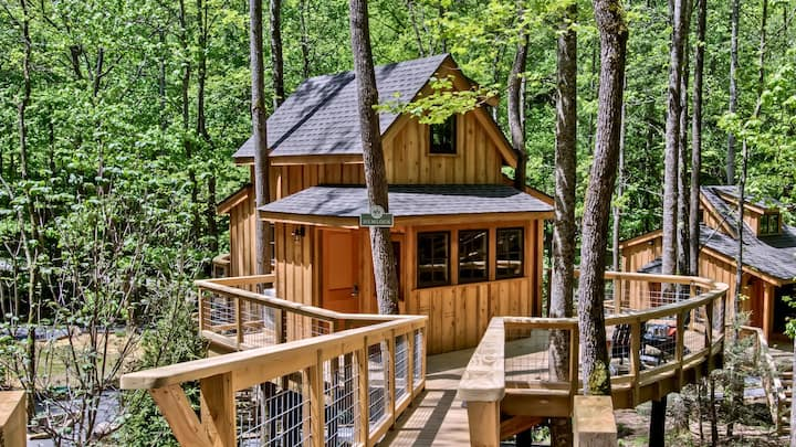 The Hemlock in Treehouse Grove at Norton Creek