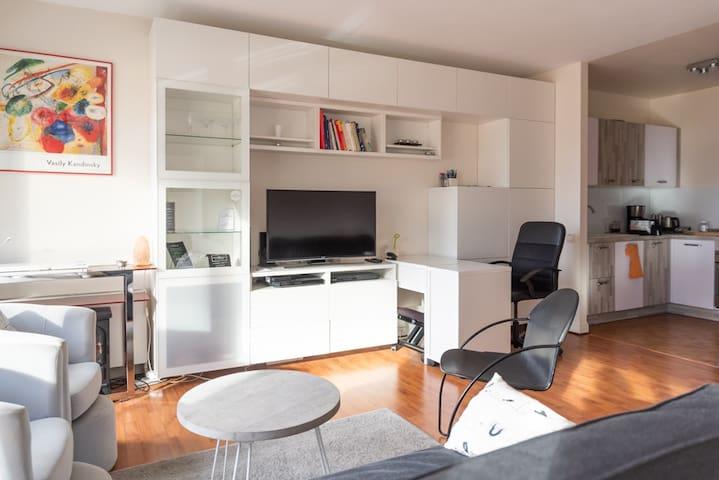 Bel appartement lumineux quai de SEINE