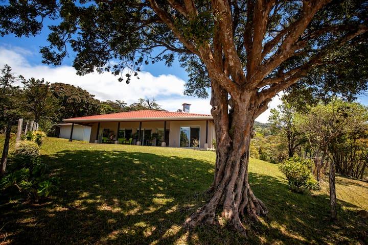 VILLA OCOTEA - Monteverde - วิลล่า