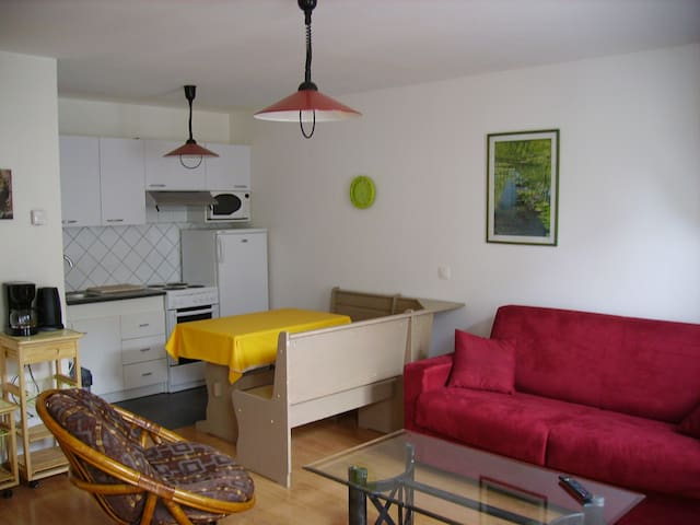 studio centre jonzac - Jonzac - Appartement