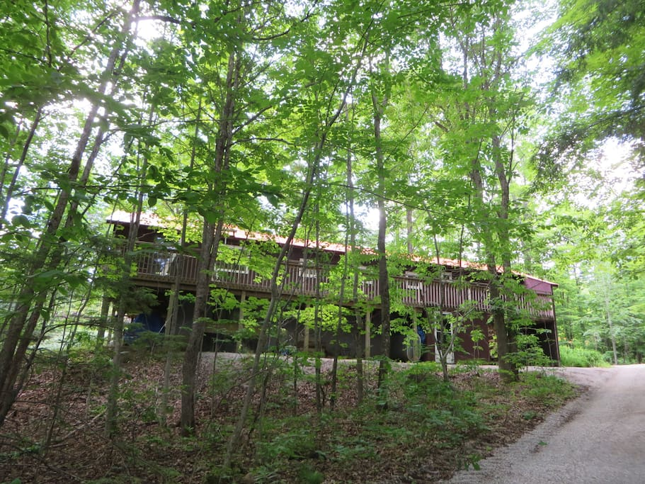 Mississagua Lake Cottage Rental Cabins For Rent In