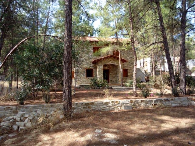Psevdas Stone House
