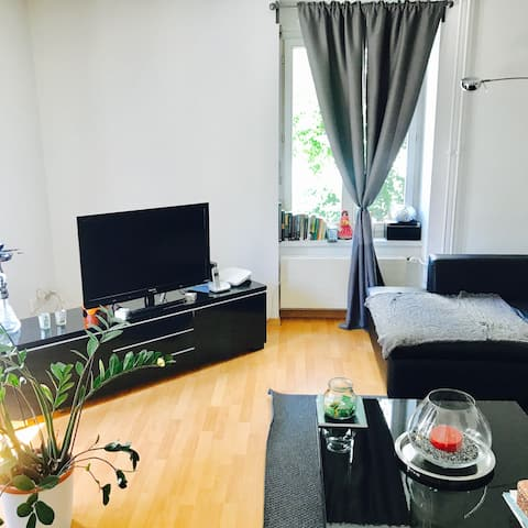 Charming and Cosy Apt in Zürich