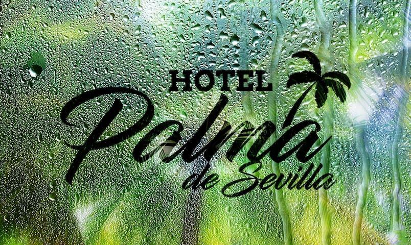 Cómoda habitación en el Hotel Palma de Sevilla.