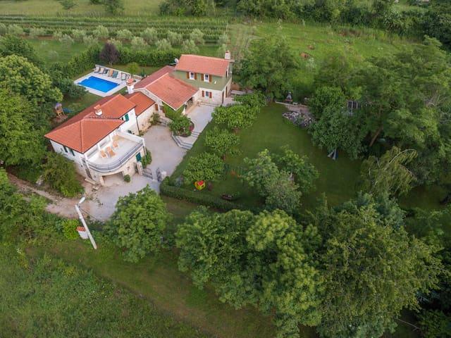 Villa Stori Grod - Nedešćina - House