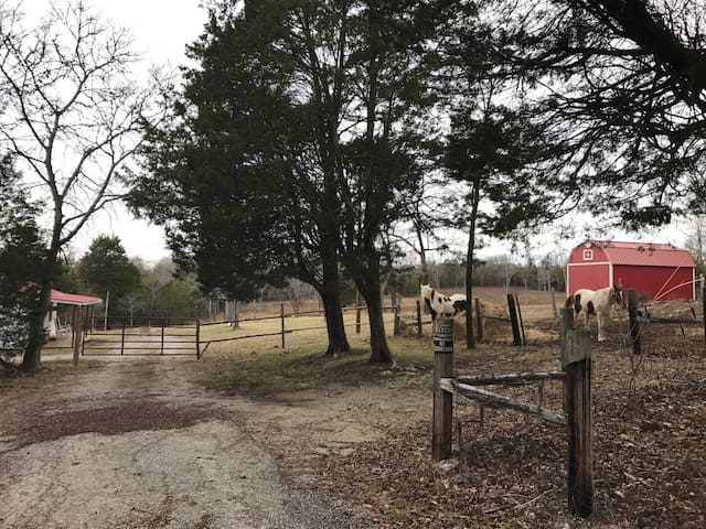 Redbird Acres(farm house on 92 wooded acres) - Columbia - Casa