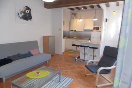 Centre Historique Saumur - Apt confort de charme - Saumur
