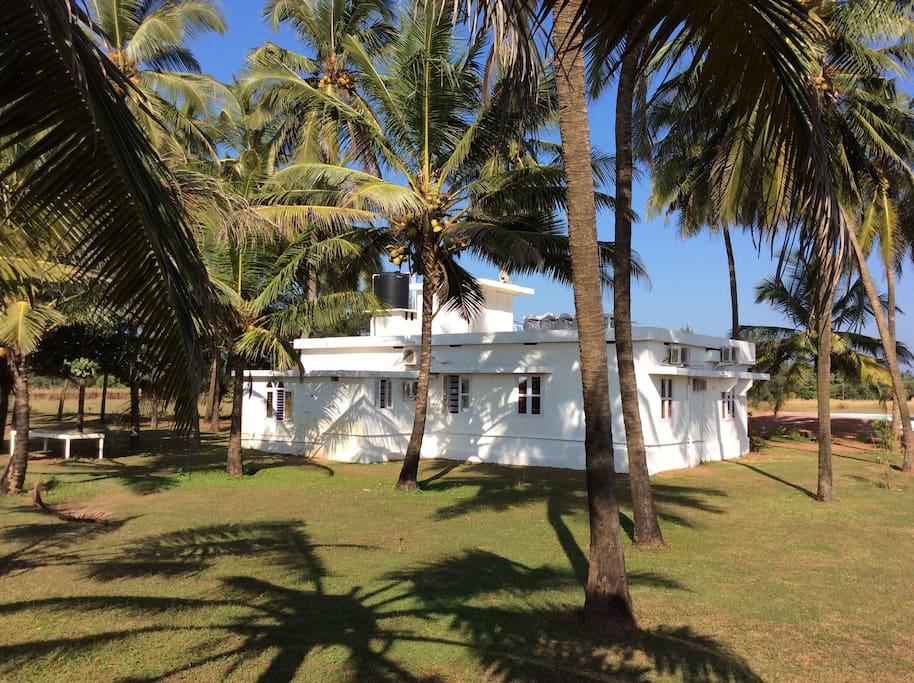 Newly renovated fisherman's cottage surrounded by coconut trees
