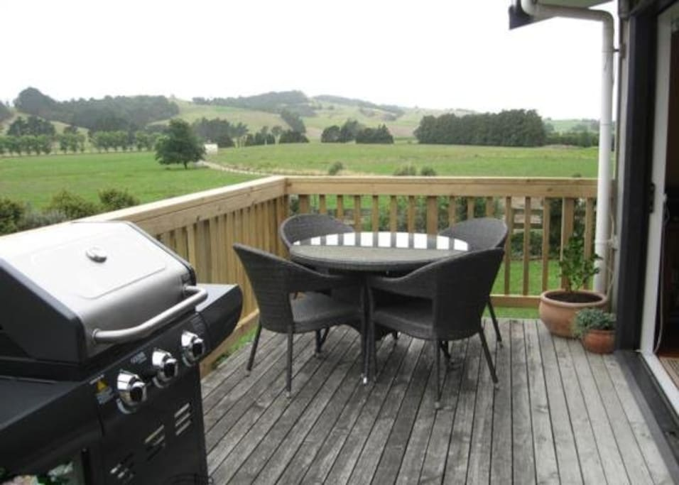 Private deck and gas BBQ