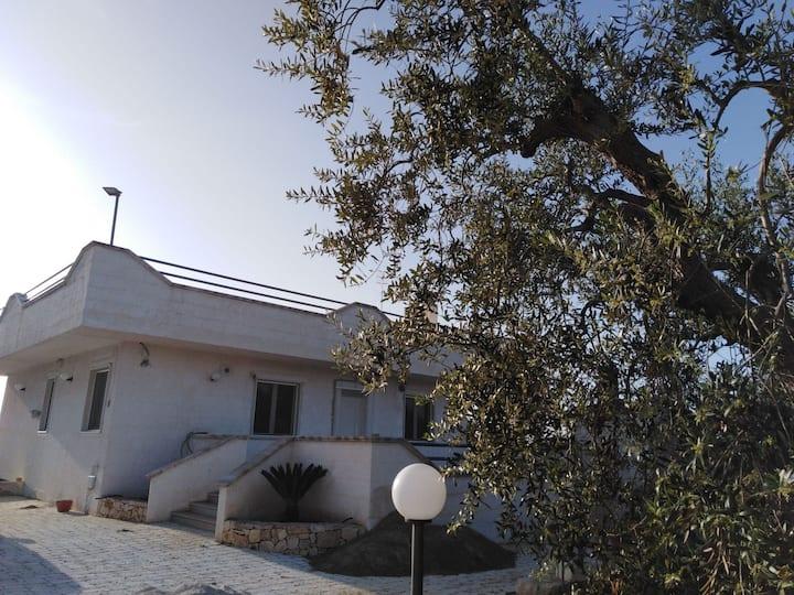 Rosmat's house