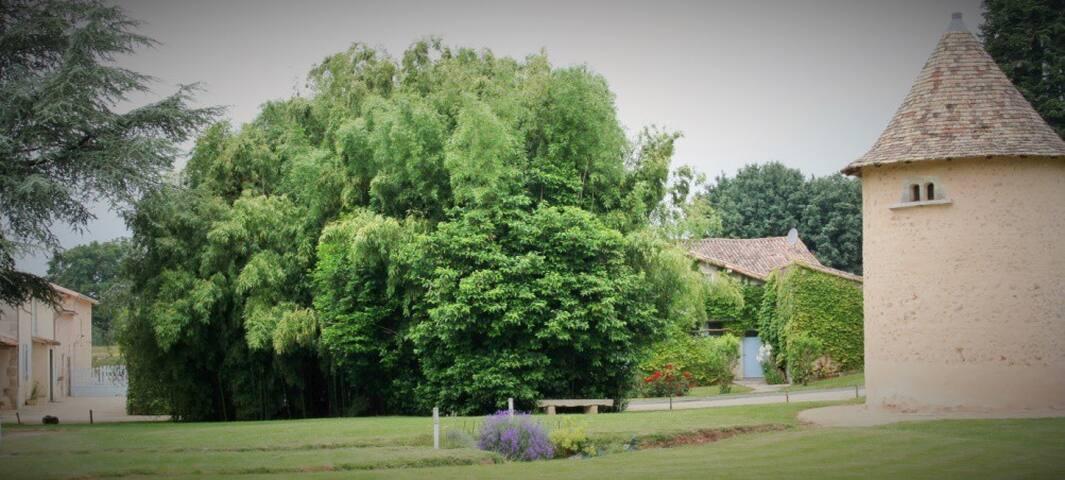 Parc extérieur - Clos de l'Orbrie