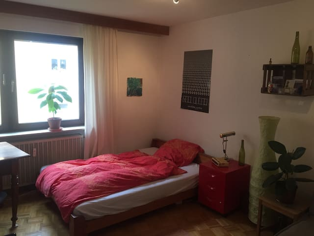 Cozy, comfortable room in the heart of Heidelberg - Heidelberg - Apartment