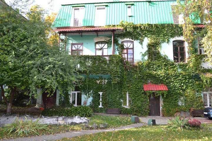 Magical two floor house,with the yard,in Chernihiv