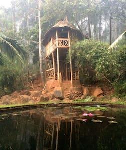 Punchiri Cottage - Wayanad - Cabane dans les arbres